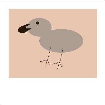 birdpic